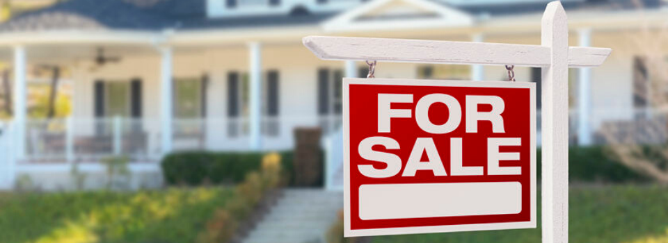 Real Estate Virtual Assistant are also very reliable